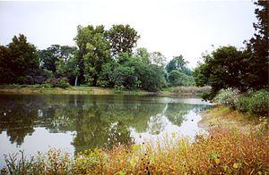 Morton Arboretum - Image: Morton Arboretum lake