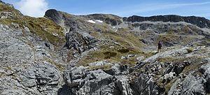 Arthur Wakefield - View up Mount Arthur