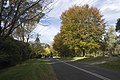 Mount Wilson NSW 2786, Australia - panoramio (55).jpg