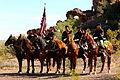 Mounted Ceremonial Unit.jpg