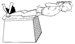 Renforcement Musculaire Exercices Exercices Du Tronc Wikiversite