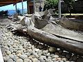 Museo de Ancud.jpg