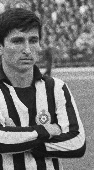 Mustafa Hasanagić - Image: Mustafa Hasanagić (1966)