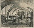 Muzeum Starożytności w Warszawie w pałacu Kazimierzowskim (58358).jpg