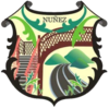 Official logo of Núñez