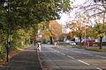 NCN Route 41 crosses Radford Road - geograph.org.uk - 1563344.jpg