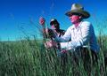 NRCSSD85011 - South Dakota (6205)(NRCS Photo Gallery).tif