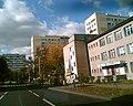 Na ulicy Centralnej w Puławach - panoramio.jpg