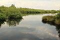 Nationaal park De Groote Peel 04.jpg