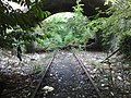Nature claims back railway line - panoramio.jpg