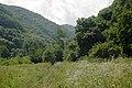 Near Iluch hutor - panoramio - Alexey Komarov.jpg