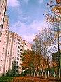 Near Nieścierava street in Miensk = Ваколіцы вуліцы Несьцерава - panoramio.jpg