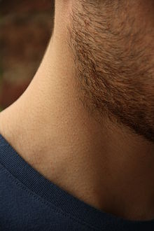 Neck & cheek 1 - Picture by Giovanni Dall'Orto, August 19 2014.jpg
