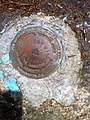 Nehantic Trail - Mount Misery National Geodetic Survey marker.jpg