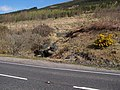 New Glen Fruin Road - geograph.org.uk - 160774.jpg