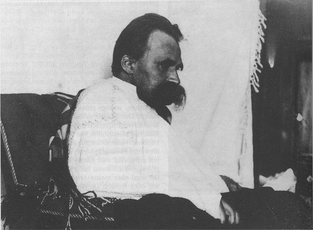 Nietzsche S Insanity Letters