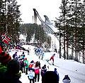 Nordic World Ski Championships 2017-02-26 (33248498155).jpg