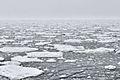 Nordpolarmeer 1 2014-08-27.jpg