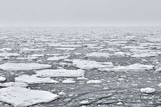 Arctic ice pack - Photo from onboard the  MS Hanseatic, 2014-08-27:  Polar ice limit  (Record position 85°40,7818' N, 135°38,8735' E)