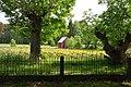 Norrbys museigård kvarnen.jpg