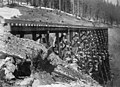Northern Pacific Railway trestle during winter, Washington, ca 1887 (WASTATE 2375).jpeg
