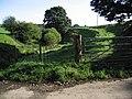 Not man-made - geograph.org.uk - 968931.jpg