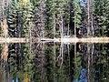 Nuuksio. Kattilajärvi. Foto by Victor Belousov. - panoramio (14).jpg