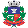 O-brasao-cidade-marechal-floriano-1.png
