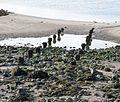Old Lifeboat Slipway remnants, Irvine Harbour, North Ayrshire.jpg
