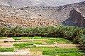 Oman (8).jpg