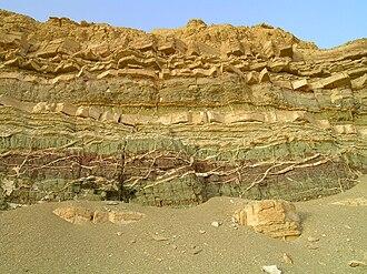 Пласты осадочных или вулканогенных горных пород изучает стратиграфия