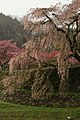 Oudahongo, Uda, Nara Prefecture 633-2156, Japan - panoramio.jpg