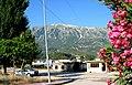 Përmet 23 qershor - panoramio.jpg