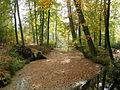 PA281651 Oelerbeek herfst.JPG