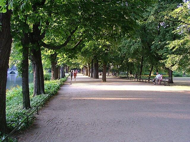 Allées du parc en été.