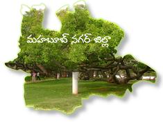 Palamuru Symbol in DIst Map.png