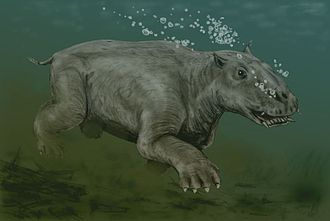 Desmostylia - Restoration of Paleoparadoxia