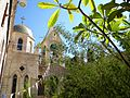 Palestine, Greek Orthodox monastery St. Gerassimos (Deir Hijla)(Friend of Lion)(6).jpg