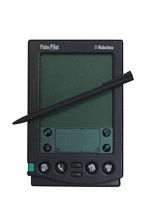 Palm-IMG 7025.jpg