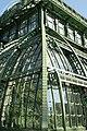 PalmenhausSchönbrunn08.JPG