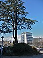 Parc Malagnou, Route de Malagnou, Geneva, Switzerland - panoramio (9).jpg
