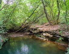 Parco fluviale alta Val d'Elsa 6.jpg