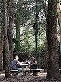 Parque Metropolitano - La Sabana - San Jose - Costa Rica - 02 (8479442183).jpg
