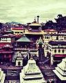 Pashupatinath temple View.jpg