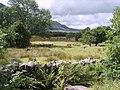 Pasture at Bowness - geograph.org.uk - 1424511.jpg