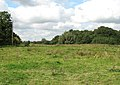 Pasture land west of Heckingham - geograph.org.uk - 1493118.jpg