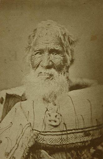 Eruera Maihi Patuone - Patuone in his later years