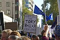 People's Vote March For The Future (30596391847).jpg