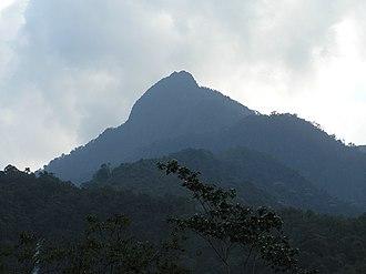 Farallones de Cali - Pico de Loro (Parrot Peak)