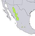 Pinus durangensis range map.jpg